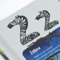 Zebra - letters rectangle